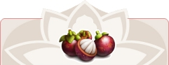 Mangosteen the power fruit!